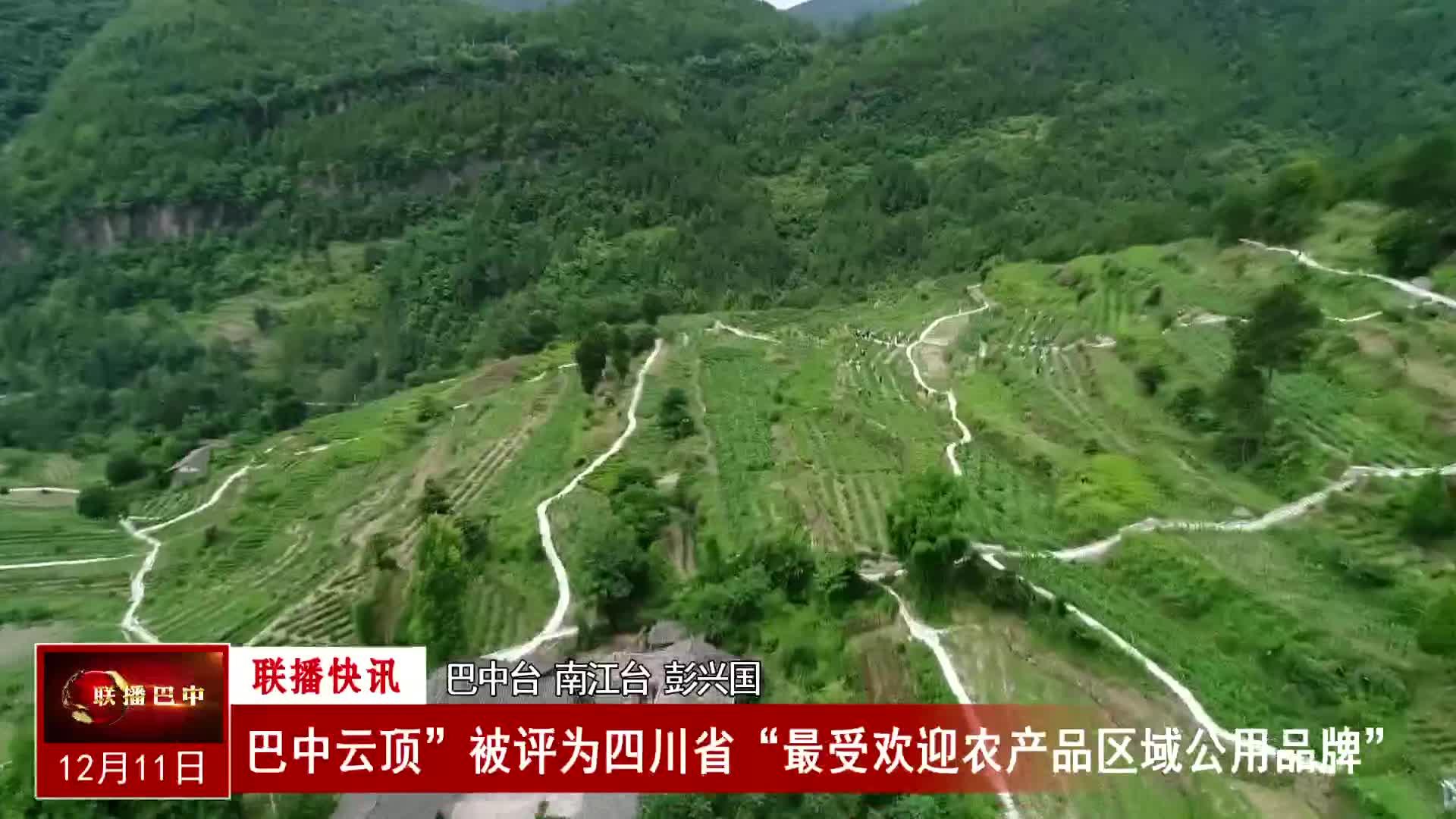 """巴中云顶""""被评为四川省""""最受欢迎农产品区域公用品牌"""""""